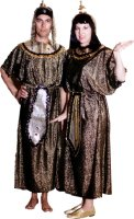 Egyptian Pharoah Costume, Gold & Black, Size Small - Large
