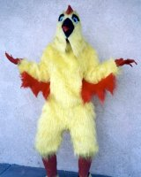 Chicken Costume Size All