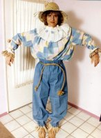 Scarecrow Costume Size Large