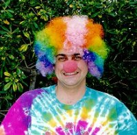 CLOWN WIG - BUDGET - Rainbow