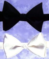 BOWTIE - BANDED