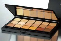 MEDIA PRO ADJUSTER / CONCEALER PALETTE