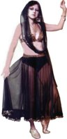 Belly Dancer Costume Size Medium