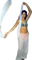 Harem Lady Costume Size Medium