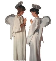 Angel Costume Size Most
