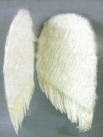 "WINGS - FEATHER 36"" Black or White"