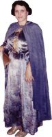 Guinevere Costume, Size Medium/Large, Grey-Blue