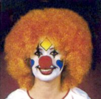 CLOWN WIG - DISCOUNT - Orange