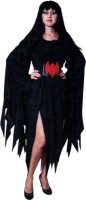 Witch Costume, Size Most