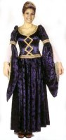 Guinevere Costume, Size Large / XLarge, Blue