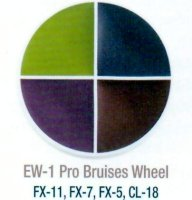PROFESSIONAL BRUISE WHEEL by Ben Nye Makeup, #EW-1