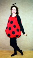 Lady Bug Costume, Size Most