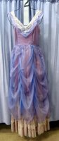 Sleeping Beauty Costume Size Small