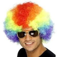 CLOWN WIG - SMALL - Rainbow