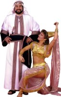 Harem Lady Costume Size Small