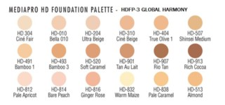 HD Palettes Global by Ben Nye