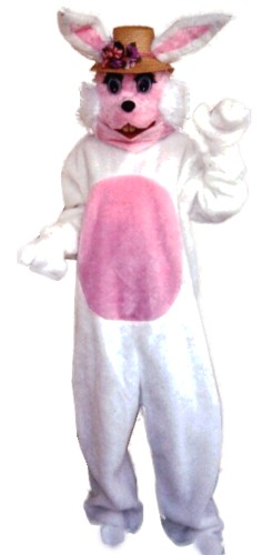 Girl Bunny Costume, Size Most