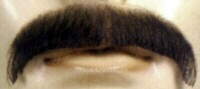 BLACK HUMAN HAIR MOUSTACHE - BUSHY